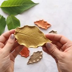 clay art projects LEAF CLAY DISHES This may be one of our favorite Fall art projects. Its actually easier than it looks too! Grab some air dry clay, Easy Diy Crafts, Home Crafts, Fun Crafts, Arts And Crafts, Crafts To Make And Sell Unique, Easy Gifts To Make, Easy Handmade Gifts, Leaf Crafts, Diy Crafts For Gifts