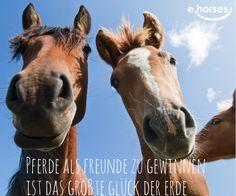 <3 <3 <3 Finde deinen Freund auf www.ehorses.de