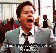 Mark Wahlberg in The Other Guys. (gif)