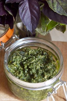 Basil Pesto in a Jar