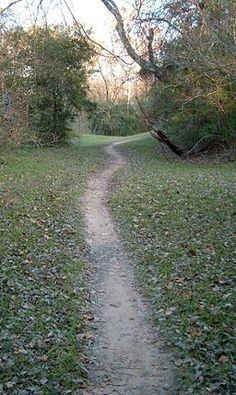 Terry Hershey Park Bike Trail, Houston, Texas
