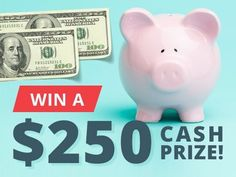 $250 cash, win this prize! Spend this extra cash on whatever you please, whether that means saving your winnings for a rainy day, storing it away in your getaway fund, or paying off some bills. Win the cash for safe-keeping or thrills.