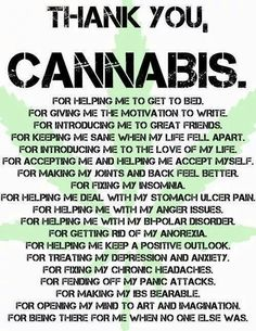 What Cannabis is REALLY doing for people. Thank You Cannabis Wizz Khalifa, Life Falling Apart, Marijuana Facts, Marijuana Funny, Weed Facts, Endocannabinoid System, Puff And Pass, After Life, Medical Cannabis