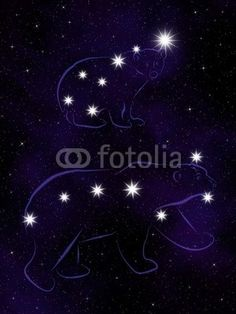 """Wall Mural """"constellations, asterism, astral - the great bear (ursa major) and the lit bear (ursa minor)"""" ✓ Easy Installation ✓ 365 Days Money Back Guarantee ✓ Browse other patterns from this collection!"""