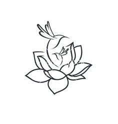 Birds in flower sign vector lotus, hummingbird by steinar14 on VectorStock®