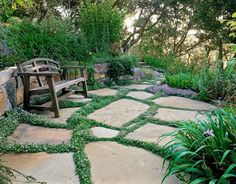 Thyme  Thyme blurs the lines between patio pavers    Read more: Ground Cover Flowers - Low Growing Flowers - Country Living