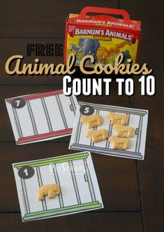 FREE Animal Cookies Count to 10 Activity. This is such a fun math activity to help toddler, preschool, and kindergarten age kids practice counting while having fun with animals Preschool Circus, Free Preschool, Preschool Lessons, Toddler Preschool, Cookie Sheet Activities, Craft Activities For Kids, Preschool Activities, Preschool Boards, Circus Theme Classroom