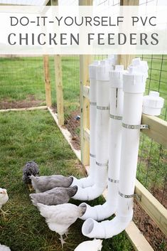 These chicken feeders are easy and reduce feed waste! Check them out and make th… These chicken feeders are easy and reduce feed waste! Check them out and make them today. Backyard Chicken Coop Plans, Chicken Garden, Building A Chicken Coop, Chickens Backyard, Inside Chicken Coop, Chicken Coop Pallets, Chicken Coop Decor, Small Chicken Coops, Chickens In Garden