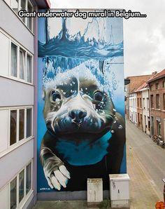 Amazing Mural In Belgium #Art #AnimalArt
