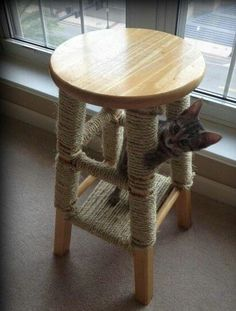 Reciclando: banco de madera como rascador para gatitos.