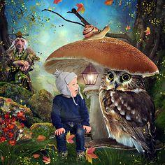 Mushroom_Kingdom_Adika