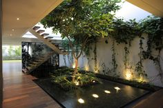 10 Stunning Tips: Natural Home Decor Modern Fireplaces natural home decor ideas stones.Natural Home Decor Earth Tones Pillow Covers natural home decor modern window.Natural Home Decor Wood. Indoor Trees, Indoor Plants, Indoor Gardening, Indoor Outdoor, Organic Gardening, Indoor Balcony, Interior Garden, Interior And Exterior, Landscape Design