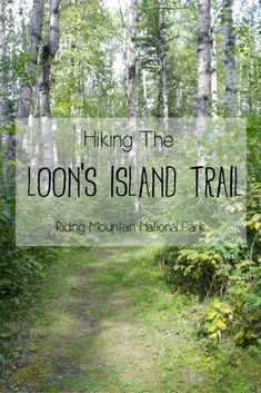 Hiking the Loon's Island Trail in Manitoba's Riding Mountain National Park | The Loon's Island Trail is a short, easy and flat hike along the shoreline of Lake Katherine in Riding Mountain Park. It is a beautiful and worthwhile hike! Check out my blog for more photos and information about the trail.