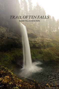 South Falls Oregon Waterfall Hike - Trail of Ten Falls, Silver Falls State Park, Willamette Valley // Local Adventurer Oregon Travel, Travel Usa, Oregon Waterfalls, Silver Falls, Waterfall Hikes, Hiking Guide, Willamette Valley, State Parks, Places To See