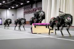MIT researchers have trained their robotic cheetah to see and jump over hurdles as it runs — making this the first four-legged robot to run and jump over obstacles autonomously.