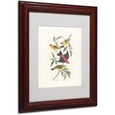 Trademark Fine Art Louisiana Tanager Canvas Art by John James Audubon, Wood Frame, Size: 11 x 14, Multicolor