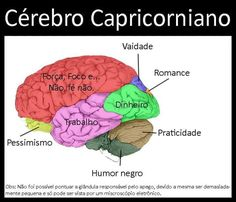O Cérebro Capricorniano