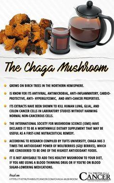 Chaga Mushroom: This Unusual Tree Fungus is a Medicinal Powerhouse Natural Cancer Cures, Natural Cures, Natural Health, Natural Medicine, Herbal Medicine, Herbal Remedies, Health Remedies, Superfood, Mushroom Benefits