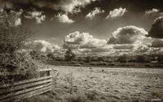 https://flic.kr/p/Mu5NJZ   Small Flock   Leicestershire Views