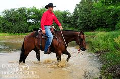 Downunder Horsemanship   Training Tip: Horse Overreacts To Other Horses On The Trail