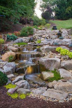Waterfall created by the #PondStars on #NatGeoWild. #WaterfallWednesday