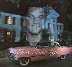 Elvis Forever.... .