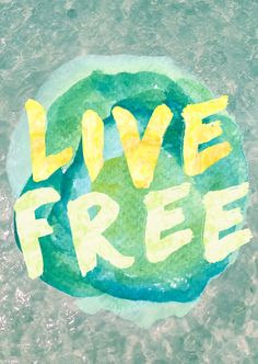 LIVE FREE @seattlestravels
