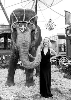 Reese Witherspoon.......David James Photography INC................I need an elephant. Can anyone let me borrow an elephant for a day?