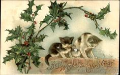 Best Wishes For Christmas With Cats