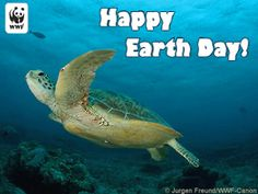 Happy Earth Day!!!!