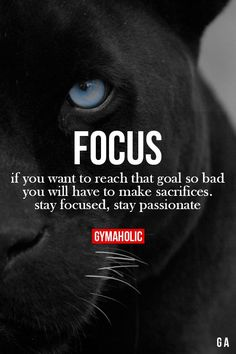 Focus!! Fitness Revolution -> http://www.gymaholic.co/ #fit #fitness #fitblr #fitspo #motivation #gym #gymaholic #workouts #nutrition #supplements #muscles #healthy
