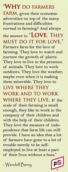 WHY DO FARMERS FARM? We do it for the love of agriculture. Thankful to be a part of such an amazing industry. Harvest is just around the corner. Reminder of why we do what we love. Country Quotes, Country Life, Thats The Way, That Way, Agriculture Quotes, Farming Quotes, Ag Quote, Farm Kids, Farm Family