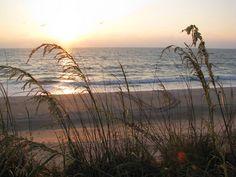 Atlantic Ocean Beaches   ... Atlantic Ocean sunrise. Can you see the sea turtle tracks on the beach