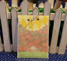 Seed packet party favors