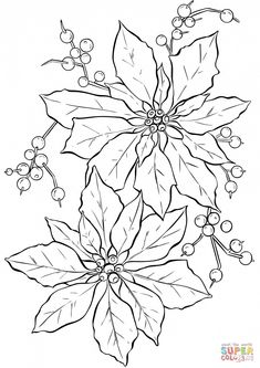 See 4 Best Images of Printable Line Art. Inspiring Printable Line Art printable images. Christmas Poinsettia Line Art Abstract Doodle Art Coloring Pages Adult Grimm Fairy Tales Coloring Pages Van Gogh Starry Night Coloring Free Christmas Image Christmas Coloring Pages, Coloring Book Pages, Coloring Sheets, Flower Coloring Pages, Mandala Coloring, Christmas Images, Christmas Colors, Christmas Art, Xmas