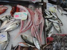 Peixes da região da Ístria-Croácia