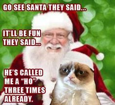 Funny pictures about Grumpy Cat sits on Santa's lap. Oh, and cool pics about Grumpy Cat sits on Santa's lap. Also, Grumpy Cat sits on Santa's lap. Grumpy Cat Quotes, Funny Grumpy Cat Memes, Funny Cats, Funny Memes, Hilarious, Grumpy Kitty, Grump Cat, Funny Animals, Funny Quotes