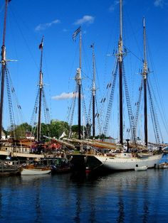 Boats in Camden, Maine