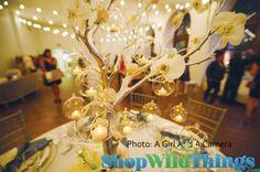 Best tree centerpieces images wedding decoration