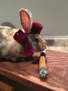 bunny 11 Twitter  Doctor Who Today @DoctorWho_Today