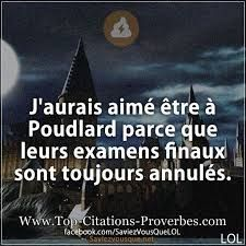 Quand t aimes pas les examens finaux 😬 Pour plus -> anais_Fbg Harry Potter Decor, Harry Potter Love, Harry Potter World, Harry Potter Memes, Saga, Image Fun, Disney Fun, Fantastic Beasts, Funny Photos