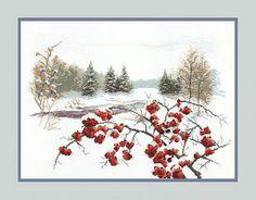 Gallery.ru / Фото #10 - ЧМ Рябина зимой - natalytretyak