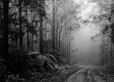 black and white photos - Google Search