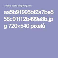 aa5b91995bf2a7be558c91f12b499a8b.jpg 720×540 pixelů