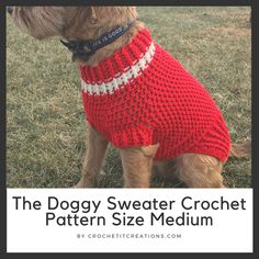 This crochet dog sweater pattern comes in 6 different sizes. Pattern uses basic crochet stitches. Crochet Dog Sweater Free Pattern, Crochet Dog Patterns, Dog Sweater Pattern, Crochet Hats, Dog Crochet, Free Crochet, Sweater Patterns, Crochet Ideas, Crotchet