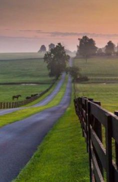 Country road takes me home Beautiful Roads, Beautiful Places To Visit, Beautiful Landscapes, Country Life, Country Roads, Country Fences, Places To Travel, Places To See, Travel Destinations