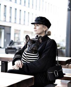 French Bulldog wearing a pipolli dog striped tee