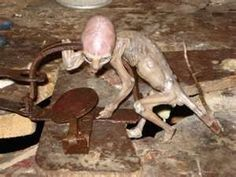 In May of 2007, a small animal was caught in a rat trap in Mexico. The farmer that caught it drown it out of fear. Researchers have done numerous tests on the creature. It was first thought to be a skinned monkey but the tests proved not only did it have skin but the skin was close to human and reptilian combined. The creature has a large brain cavity which suggests intelligence. The researchers also could not find a DNA match of the creature and have no idea what it is or where it came…