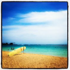 Ala Moana Beach - #oahu #hawaii #nature #scenic