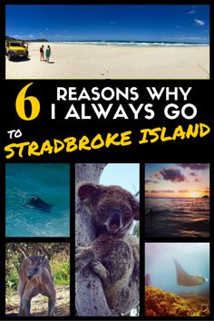 Every time we receive new visitors in Brisbane, I want to plan a trip to North Stradbroke Island. Straddie, as the locals call it, is easy to access from Brisbane and has a lot to offer. It is the perfect escape when time is limited. Visit my blog for more info.